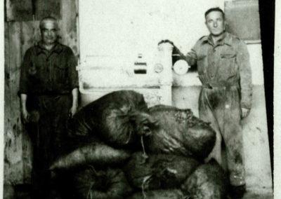 b__scula de la alamazara de Salas Atas 1945